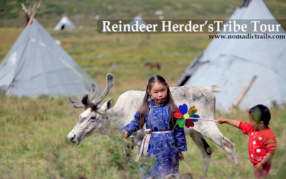 Reindeer Tribe Tour