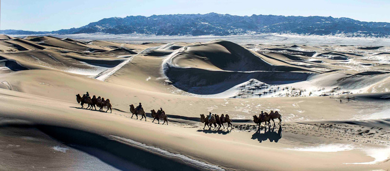 Things-to-do-in-MOngolia--ride-a-camel