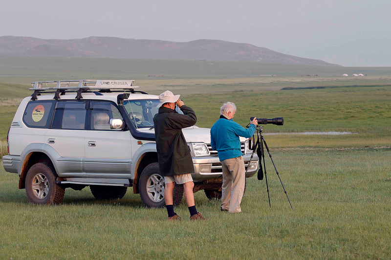 Things-to-do-in-Mongolia-Birdwatching-in-Mongolia