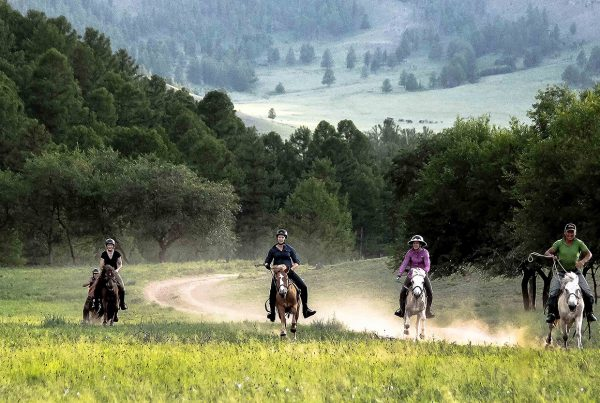 Horse riding holiday in Mongolia