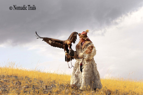 Famous-picture-of-Golden-Eagle