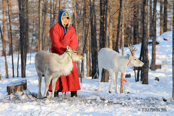 reindeer-herder