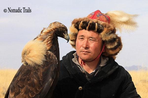 Cover -Golden eagle1