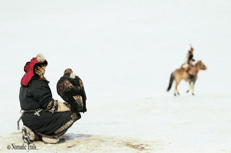 Golden Eagle Hunter