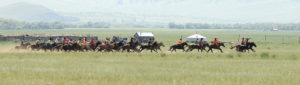 Horse race -Local Naadam