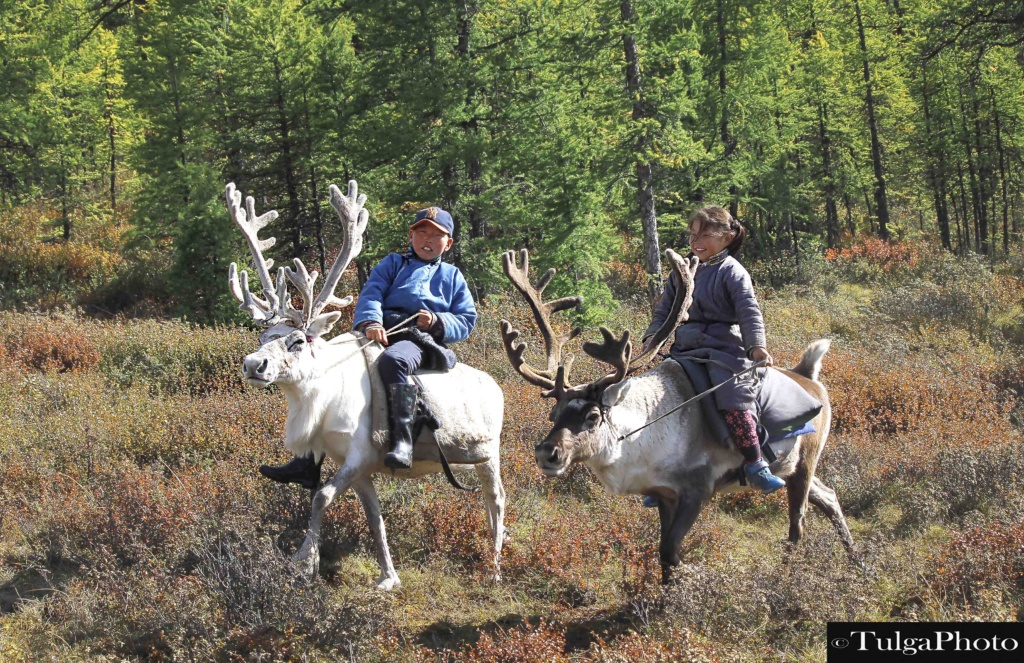 2 reindeer riders in the wood