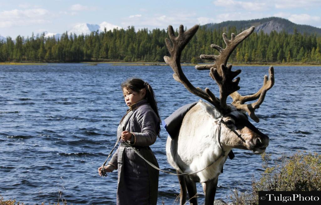 Tsaatan Reindeer herder Maralaa at Uzgen nuur