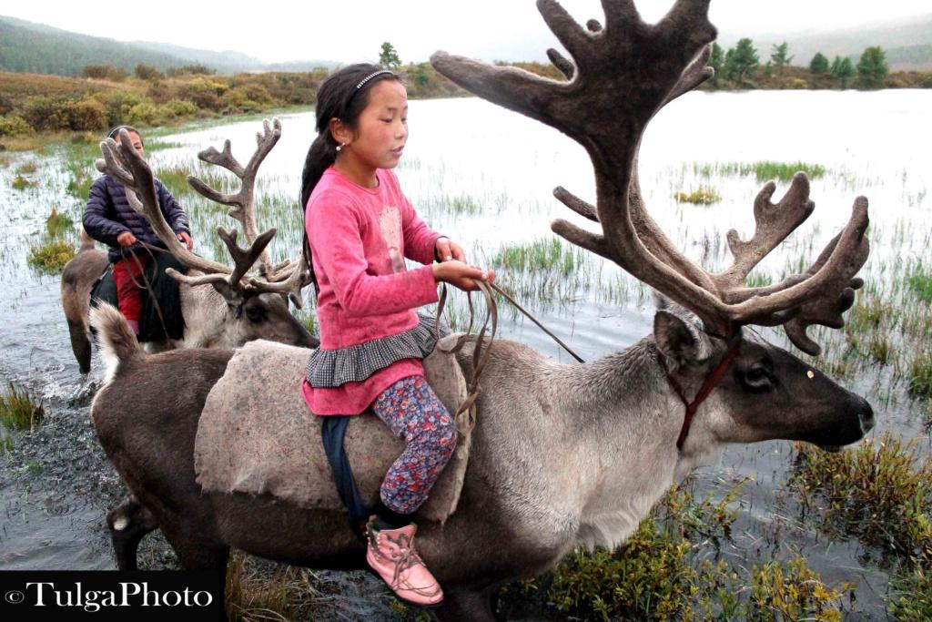 Reindeer rider girl