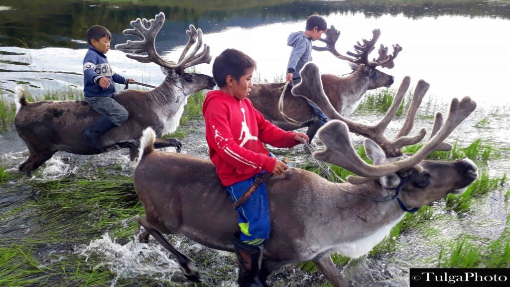 Reindeer riders in the water