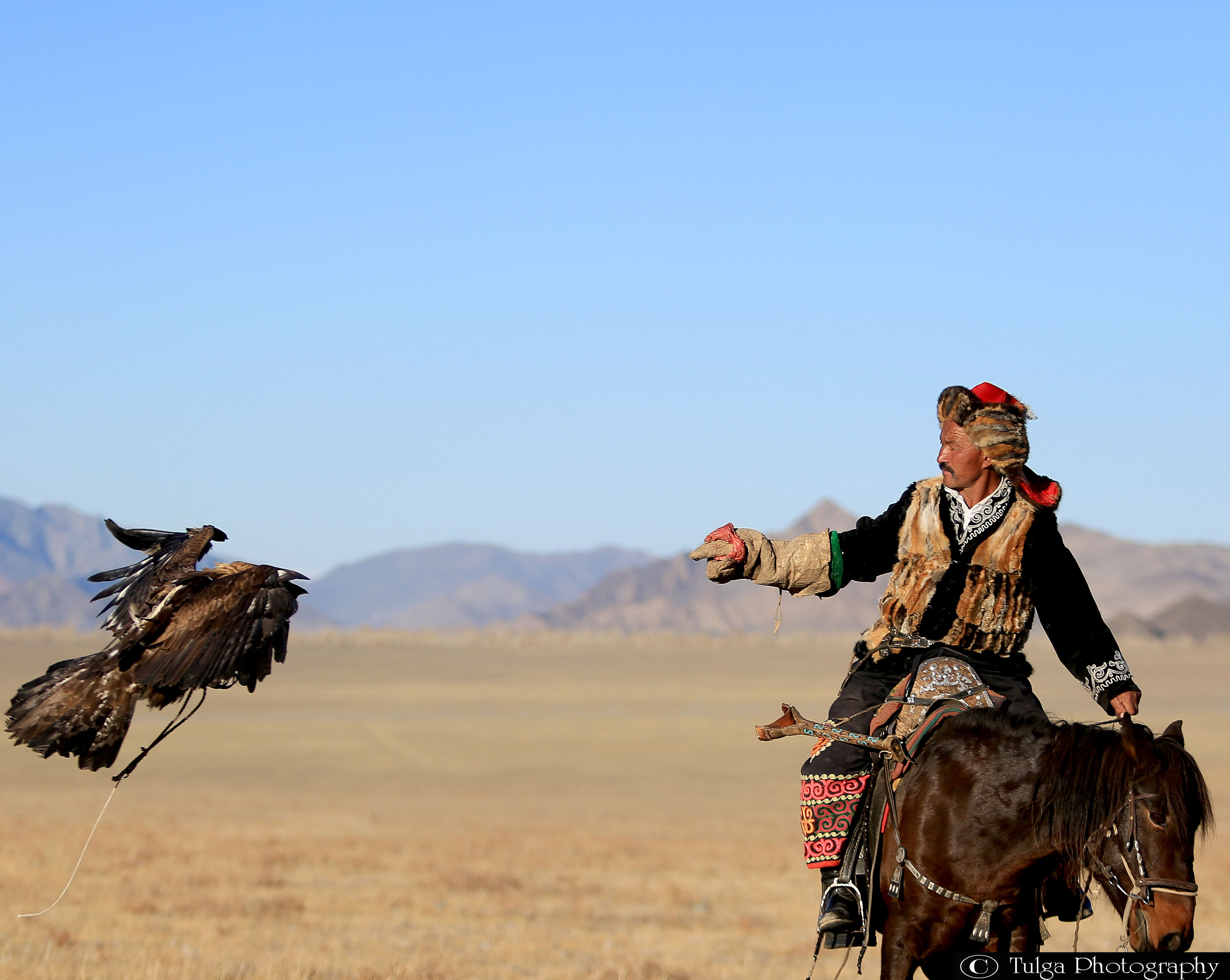 Golden Eagle Competitions- Flying Eagle