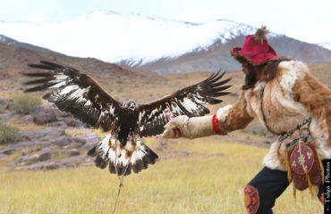 Eagle Master 1