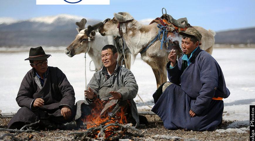 Reindeer Herders